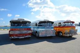 autobus malta_5